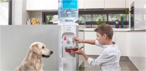 dispensadores de agua fria aquaservice hogar